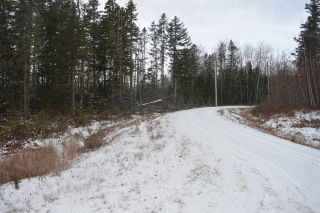 Photo 11: 221 Easy Street in Kerrs Mill: 102N-North Of Hwy 104 Vacant Land for sale (Northern Region)  : MLS®# 202025679