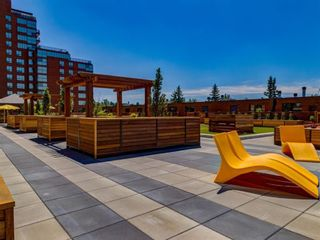 Photo 29: 508 330 26 Avenue SW in Calgary: Mission Apartment for sale : MLS®# A1100545