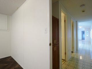 Photo 21: 26 Mount Stephen Avenue in Austin: House for sale : MLS®# 202102534