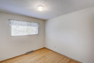 Photo 19: 2740 LIONEL Crescent SW in Calgary: Lakeview Detached for sale : MLS®# C4303561