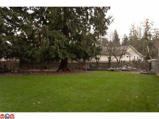 Photo 5: 13264 CRESCENT Road in Surrey: Elgin Chantrell House for sale (South Surrey White Rock)  : MLS®# F1102594