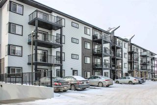 Photo 4: 306 3353 16A Avenue in Edmonton: Zone 30 Condo for sale : MLS®# E4230704