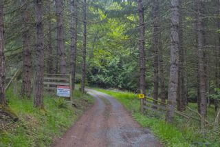 Photo 79: 1235 Merridale Rd in : ML Mill Bay House for sale (Malahat & Area)  : MLS®# 874858
