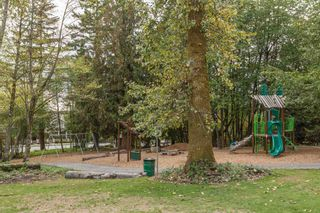 """Photo 19: 107 20449 66 Avenue in Langley: Willoughby Heights Townhouse for sale in """"Natures Landing"""" : MLS®# R2110204"""