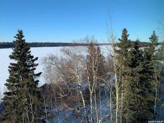 Photo 49: 20 Sunset Cove in Cowan Lake: Residential for sale : MLS®# SK841498