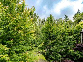 """Photo 11: 404 7418 BYRNEPARK Walk in Burnaby: South Slope Condo for sale in """"GREEN"""" (Burnaby South)  : MLS®# R2466553"""