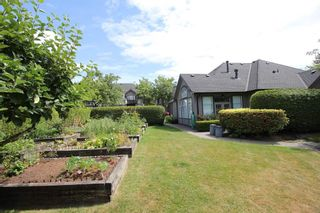 """Photo 14: 19 4740 221 Street in Langley: Murrayville Townhouse for sale in """"Eaglecrest"""" : MLS®# R2383487"""