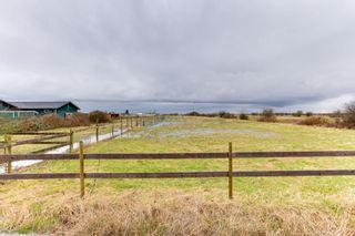 Photo 10: 2975 53 Street in Delta: Tsawwassen North House for sale (Tsawwassen)  : MLS®# R2532596