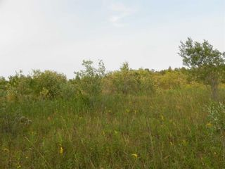 Photo 8: 22084 PT 2 PARCEL, WHITMORE RD in FORT FRANCES: Vacant Land for sale : MLS®# TB212402