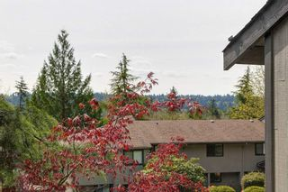 Photo 20: 959 BLACKSTOCK Road in Port Moody: North Shore Pt Moody Townhouse for sale : MLS®# R2161202