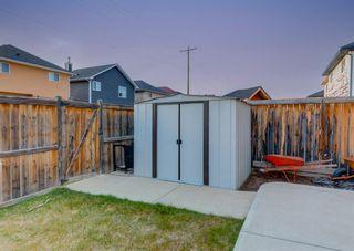 Photo 45: 135 SADDLERIDGE Close NE in Calgary: Saddle Ridge Detached for sale : MLS®# A1101462