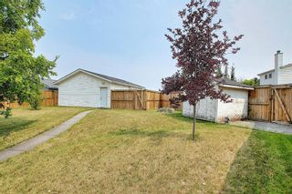 Photo 44: 94 Erin Meadow Close SE in Calgary: Erin Woods Detached for sale : MLS®# A1135362