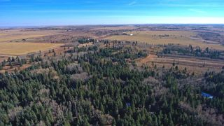 Photo 12: 20.02 Acres +/- NW of Cochrane in Rural Rocky View County: Rural Rocky View MD Land for sale : MLS®# A1065950