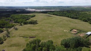 Photo 12: 51060 RGE RD 33: Rural Leduc County House for sale : MLS®# E4247017
