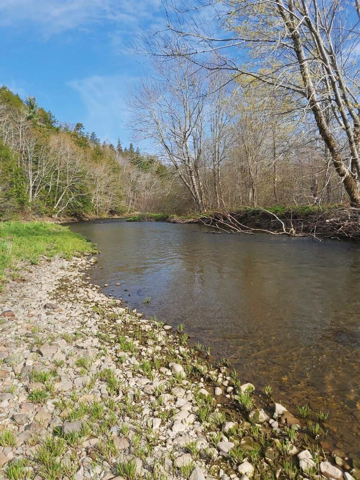Main Photo: Lot Piedmont Valley Road in Avondale: 108-Rural Pictou County Vacant Land for sale (Northern Region)  : MLS®# 202114568
