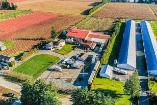 Photo 21: 190 DEFEHR Road in Abbotsford: Aberdeen Agri-Business for sale : MLS®# C8036607