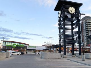 Photo 29: 717 8710 HORTON Road SW in Calgary: Haysboro Apartment for sale : MLS®# A1097461