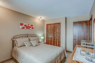 Photo 28: 87 Bermuda Close NW in Calgary: Beddington Heights Detached for sale : MLS®# A1073222