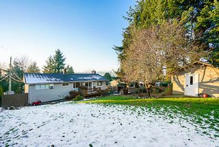 Photo 19: 10256 124 Street in Surrey: Cedar Hills House for sale (North Surrey)  : MLS®# R2239857
