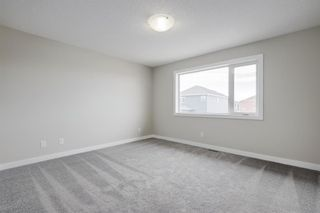 Photo 19: 57 RED SKY Terrace NE in Calgary: Redstone Detached for sale : MLS®# A1060906