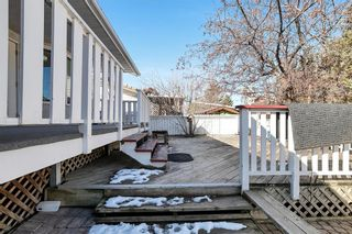 Photo 42: 46 Diamond Street Close: Red Deer Detached for sale : MLS®# A1093218