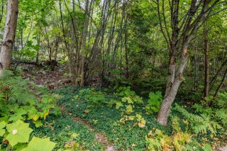 Photo 51: 1759 RIDGEWOOD ROAD in Nelson: House for sale : MLS®# 2461139
