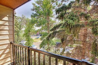Photo 23: 302 1530 16 Avenue SW in Calgary: Sunalta Apartment for sale : MLS®# A1139864