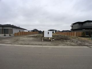 Photo 1: 238 52320 RGE RD 231: Rural Strathcona County Rural Land/Vacant Lot for sale : MLS®# E4220541