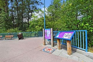 Photo 23: 404 2360 WILSON AVENUE in Port Coquitlam: Central Pt Coquitlam Condo for sale : MLS®# R2602179