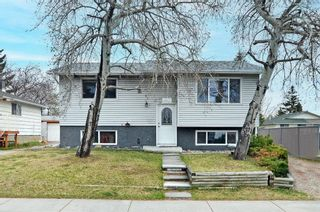 Main Photo: 224 Fonda Way SE in Calgary: Forest Heights Detached for sale : MLS®# A1102808