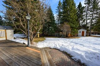 Photo 42: 2941 Lindstrom Drive SW in Calgary: Lakeview Detached for sale : MLS®# A1082838