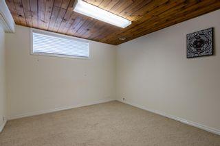 Photo 17: 4811 114B Street in Edmonton: Zone 15 House for sale : MLS®# E4255022