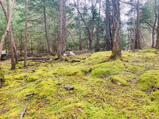 Photo 5: Lot 36 Ling Cod Lane in : Isl Mudge Island Land for sale (Islands)  : MLS®# 869675