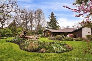 Photo 18: 623 Foul Bay Rd in VICTORIA: Vi Fairfield East House for sale (Victoria)  : MLS®# 726090