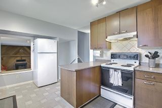 Photo 20: 9832 187 Street in Edmonton: Zone 20 House for sale : MLS®# E4253744