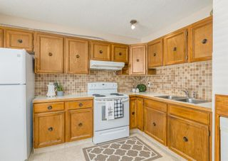 Photo 10: 3411 Doverthorn Road SE in Calgary: Dover Semi Detached for sale : MLS®# A1126939