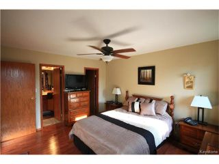 Photo 11: 17 Cedar Crescent in Morris: R17 Residential for sale : MLS®# 1701464