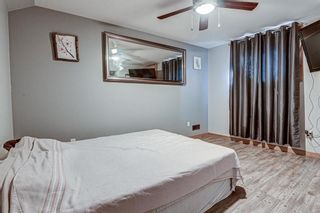 Photo 20: 126 Dovercliffe Way SE in Calgary: Dover Detached for sale : MLS®# A1082276