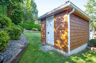 Photo 6: 4646 215B STREET in Langley: Murrayville Home for sale ()  : MLS®# R2086032