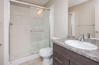 Photo 26: 256 7805 71 Street in Edmonton: Zone 17 Condo for sale : MLS®# E4266039