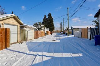 Photo 16: 153 Margate Close NE in Calgary: Marlborough Detached for sale : MLS®# A1044736