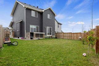 Photo 34: 155 Martha's Meadow Close NE in Calgary: Martindale Detached for sale : MLS®# A1117782