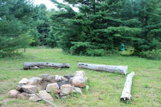 Photo 3: 3764 County Rd 46 in Havelock-Belmont-Methuen: Havelock House (Bungalow) for sale : MLS®# X5364760