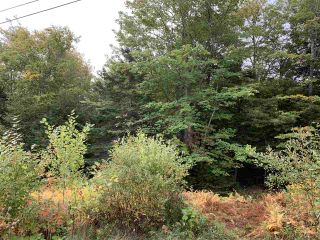 Photo 1: Lot 7-8 Logan Road in Frasers Mountain: 108-Rural Pictou County Vacant Land for sale (Northern Region)  : MLS®# 202020090