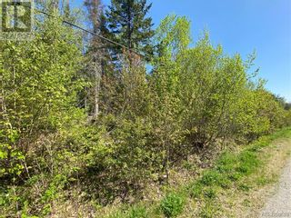 Photo 8: 5264 Rte 770 in Rollingdam: Vacant Land for sale : MLS®# NB058269