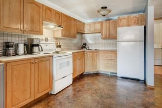 Photo 20: 3 Maple Way SE: Airdrie Detached for sale : MLS®# A1100248