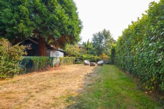 Photo 21: 2235 Shakespeare St in Victoria: Vi Fernwood House for sale : MLS®# 855193
