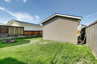 Photo 45: 135 COVEWOOD Close NE in Calgary: Coventry Hills Detached for sale : MLS®# A1023172