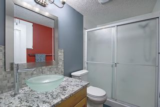Photo 41: 328 Templeton Circle NE in Calgary: Temple Detached for sale : MLS®# A1074791