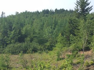 Photo 4: LOT 100ABC WEST PETPESWICK Road in West Petpeswick: 35-Halifax County East Vacant Land for sale (Halifax-Dartmouth)  : MLS®# 5158270
